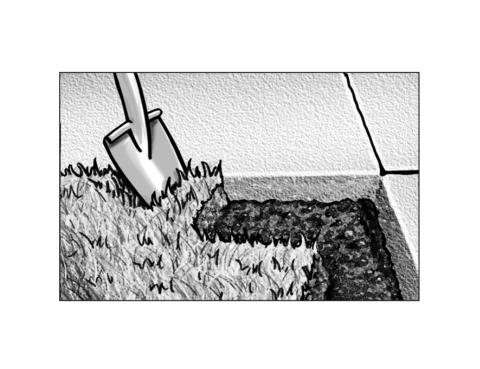 Edge the lawn to avoid run-off and keep mulch from spilling onto paving.