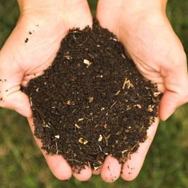 Compost improves soil fertility and health